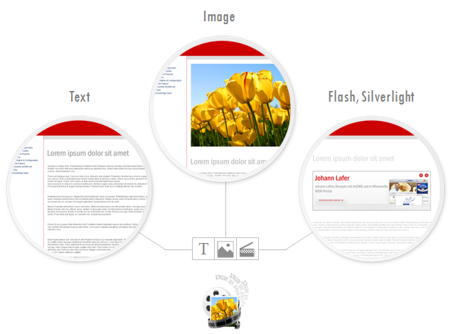 Fig. 2 Three standard content types: Text, Image and Flash